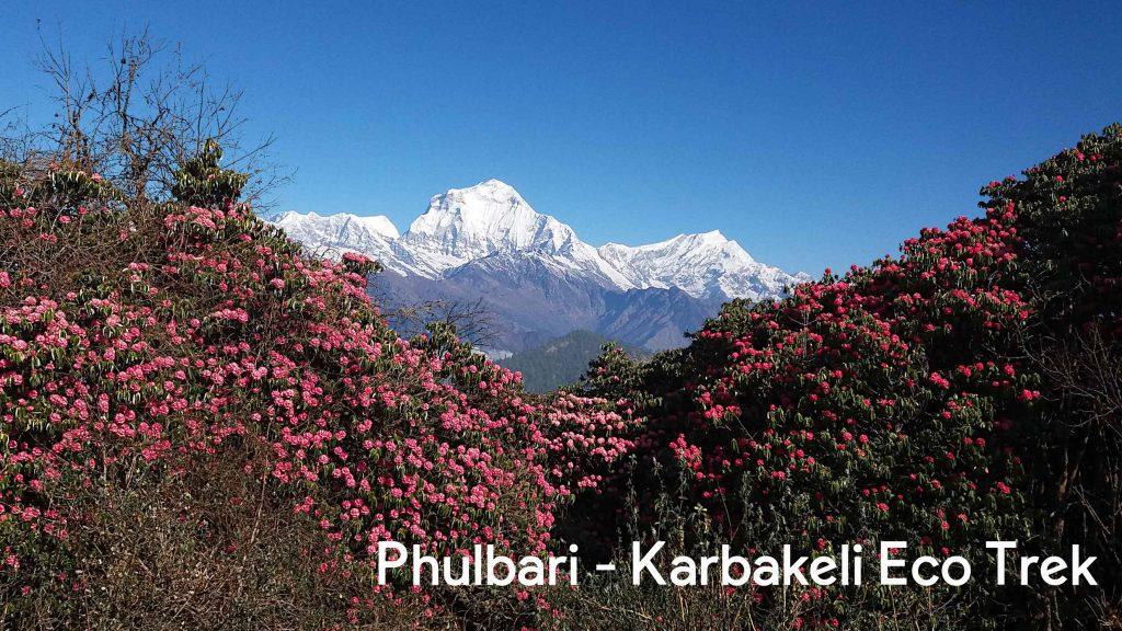 karbakeli eco trek phulbari